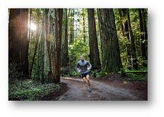 Bieganie w lesie.
