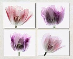 These sets of floral wall decor can be found in sets of two all the way up beyond sets of 12.  Moreover you will see a wide array of botanical wall prints to chose from, ranging from vintage to contemporary.  Meaning there are an abundance to pick from not to mention a plethora of sizes, styles and flower choices.    Pink and Purple Flower Photography Set of Four Prints, X-Ray Tulip Artwork Collection