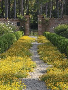 90 Beautiful Side Yard Garden Path Design Ideas - Wholehomekover If y. - 90 Beautiful Side Yard Garden Path Design Ideas – Wholehomekover If you have sufficien - Diy Garden, Garden Cottage, Dream Garden, Garden Paths, Garden Hedges, Spring Garden, Shade Garden, Modern Garden Design, Landscape Design