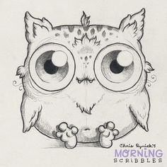 Meowl sees all!  #morningscribbles