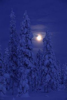 Darkness and Moon Kuusamo, Finland - photo by Paavo Hamunen (I love Finnish Names, so funny) - this pic oozes the ultimate #tranquility