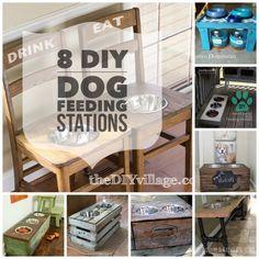 8 DIY Dog Feeding Stations - Eco Cool Dog Finds