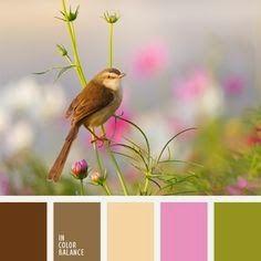 Jacqueline's Craft Nest: Color palette