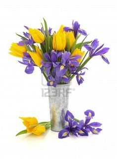 Picture of Purple iris and yellow tulip flower arrangement in an aluminum vase and loose isolated over white background. Tulips Flowers, All Flowers, Tulip Wedding, Wedding Flowers, Teleflora Flowers, Vase Arrangements, Flower Arrangement, Wedding Reception Centerpieces, Flower Names
