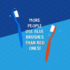 Dental Trivia: More people use blue toothbrushes than red ones! What color is yours?