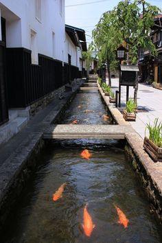 古風な白い壁500m余りの「白壁土蔵街」。瀬戸川は多種多様な色の1,000匹余りの鯉が泳いでいます。