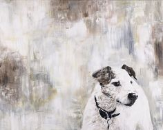 I like the combo of pet portrait & abstract background. Paul Boddum's Pet Paintings & Custom Portraits