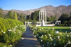 Franschhoek monument 5 minutes from La Clé des Montagnes Cape Town, Homeland, Places Ive Been, South Africa, Outdoor Structures, Hot Spots, Sunset, Country, City