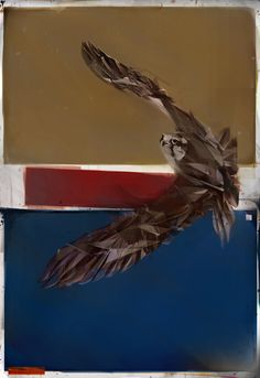 Flying Birds by Denis Gonchar, via Behance