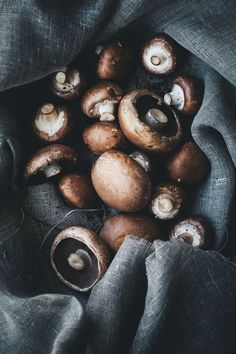 Mushroom Soup and Avocado Toast