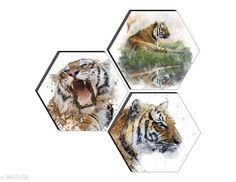 Paintings & Posters SAF Set of 3 Hexagon King of Forest 'Lion' High quality MDF Board UV Textured Painting  Material: Wooden Pack: Pack of 3 Product Length: 17 Inch Product Breadth: 17 Inch Product Height: 1 Inch Country of Origin: India Sizes Available: Free Size   Catalog Rating: ★4.1 (450)  Catalog Name: Navratri Multicolor Fabulous Paintings CatalogID_1206131 C127-SC1611 Code: 781-7488332-891