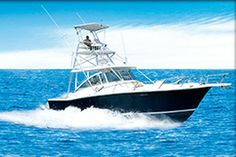 Vela, an sport-fishing boat, Luhrs type vessel. Speed and comfort all in one. #pinit