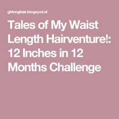 Tales of My Waist Length Hairventure!: 12 Inches in 12 Months Challenge