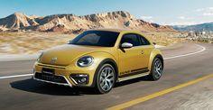 The Beetle Dune
