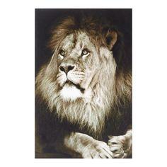Tela con leone Katanga