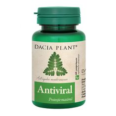 Antiviral, 60 comprimate, Dacia Plant :  Farmacia Tei Tapas, Melaleuca, Natural, Aromatherapy, Health And Beauty, Ebay, Vitamins, Pharmacy, Plant