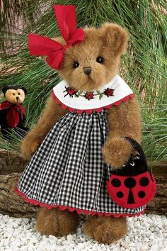 Bearington - Lara Luckybug