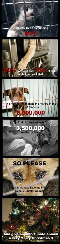 Please share to raise awareness... - The Meta Picture