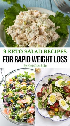 Need some healthy and delicious keto salad recipes for lunch and dinner? Here are 9 crazy filling protein-packed keto salads for rapid weight loss. These healthy and low-carb salad recipes are perfect for your keto weight loss meal plan. Salad Recipes To Lose Weight, Salad Recipes Low Carb, Diet Recipes, Healthy Recipes, Shrimp Recipes, Recipes Dinner, Diet Tips, Recipes For Lunch, Veal Recipes