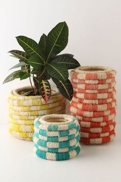 Coil pots via anthropologie - so expensive... but I think you could make with hot glue and twine/bakers twine/jute and curtain rings/shower rings, etc....