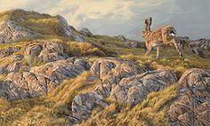 Running Brown Hare - Framed Oil Painting