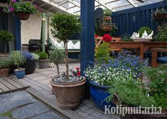 Katetulla terassilla pihaoleilua voi jatkaa myös sateen sattuessa. Suojaisassa paikassa viihtyvät myös herkemmät kasvit ja amppelikukat.