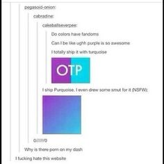 purple = Jason Grace and blue = Percy Jackson. They are now officially Purquoise (I don't ship it but it's funny and kinda cute! Best Of Tumblr, My Tumblr, Tumblr Stuff, Funny Tumblr Posts, Johnlock, Destiel, Fangirl, Fandoms, Text Posts