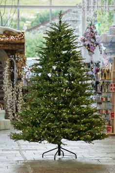 One of our trees from the fantastic Christmas Tree range at Hayes Garden World