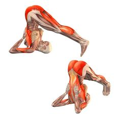 Supported plow pose - Halasana supported - Yoga Poses | YOGA.com
