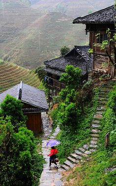 Terraces in Rain 龍脊梯田   Dragon's Backbone Rice Terraces, Longsheng, Guangxi, China 廣西 龍勝 金坑 龍脊梯田