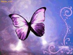 Wallpaper of Beautiful Butterflies for fans of yorkshire_rose. Purple Love, All Things Purple, Purple Rain, Shades Of Purple, Purple Stuff, Purple Swag, Purple Lilac, Purple Glitter, Dark Purple