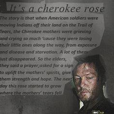 1k the walking dead glenn Rick Grimes Daryl Dixon Lori Grimes dale horvath maggie greene mine: the walking dead Hershel Greene the walking dead challenge