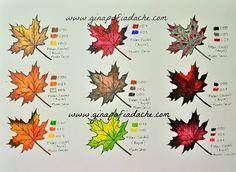 Atelier Gina Pafiadache: Sugestão de cores para os livros de colorir! #5