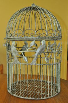 Beautiful Iron Bird Cage