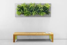 Green Contacts, Live Picture, Art Of Living, Outdoor Furniture, Outdoor Decor, Floating Nightstand, Space Saving, Wall Mount, Modern Design