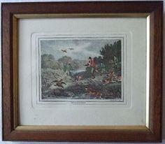 Duck Hawking, 1799 Engraving, Samuel Howitt, Framed, Hunting in Art, Prints, Antique (Pre-1900) | eBay