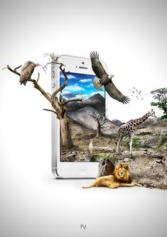 Anywhere in the World by Noxbil , via Behance