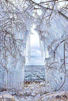 IcY CuRTaiN!! Brings back memories of the big ice storm a few years ago. so damaging to the forest but so beautiful.