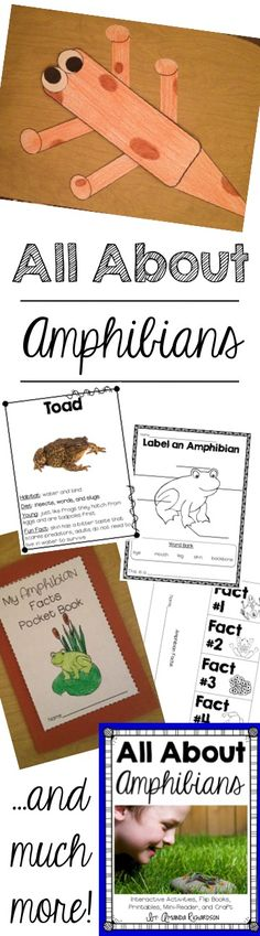 Amphibian Unit for k-2, real photos of amphibians, perfect for amphibian research!
