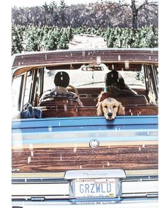 Happy first day of winter! This is my husband's dream. He thinks I should drive one around. #ohmitch #wagoneer #griswold #wintersolstice