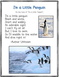 I'm a Little Penguin poem...