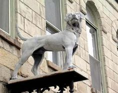 The Gray Dog of Mineral Point.