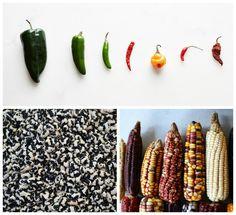 """Maíz, frijol y chile el común denominador de la comida mexicana """"En ruta-T"""". Hoy 20:00"""