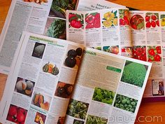 How to pick your vegetable seeds without going crazy-- navigating seed catalogues, choosing how many varieties, etc