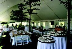 Tree tent poles? - VT Tent Co