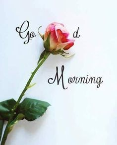 Good Morning Quotes. Morning or afternoon, evening or night, I will always love you with all my might. Good morning Love http://www.yanglish.com/good-morning-love-quotes/ #goodmorningquotesforher