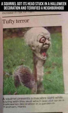 Okay, I know that's a creepy head, but read the caption above!!! This made me laugh so hard!!!!!