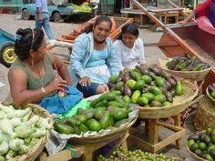 Vendedoras de aguacate en el mercado central de San Salvador. EL SALVADOR