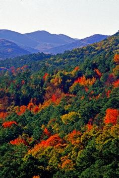 Arkansas Ouachita National Forest  / these are the views I enjoy in the fall, love living life in #Arkansas