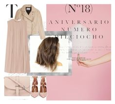 Untitled #205 by mlannan on Polyvore featuring T By Alexander Wang, Aquazzura, M.N.G and Sinclair